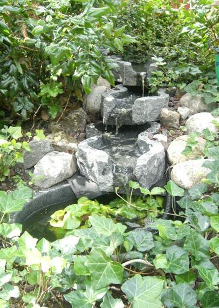 Damm från Garden Aquatica
