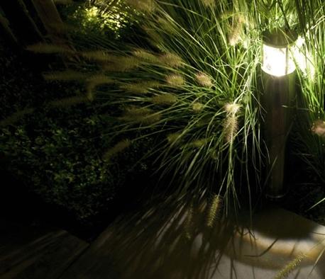 Pollare från In Lite belyser gröna växten