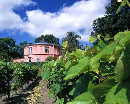 Bilden är hämtad från Rosendals trädgårdars hemsida Foto: Karin Ask