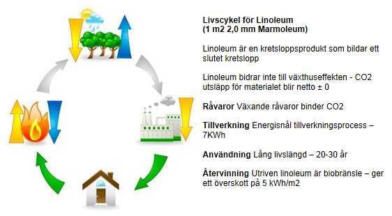 Livscykel för Forbos linoleumgolv